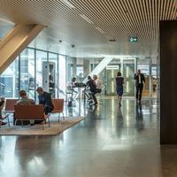 Traineeships Rotterdam, foto van Peter Schmidt