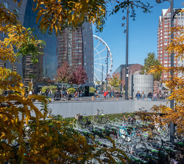 Markthal in de herfst, foto Peter Schmidt