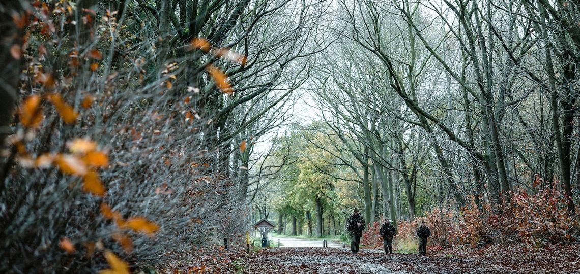 KCT lopen door een bos