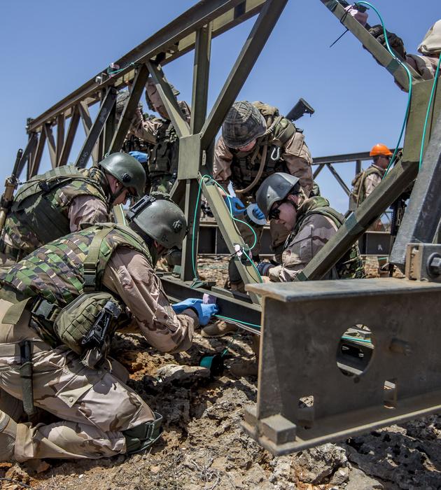 Genisten aan het werk aan een brug